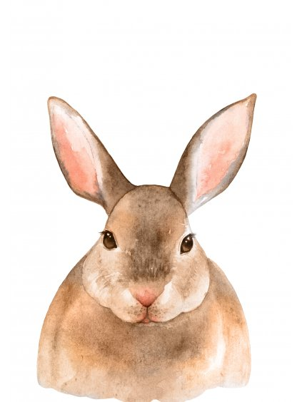 Plakát zajíček
