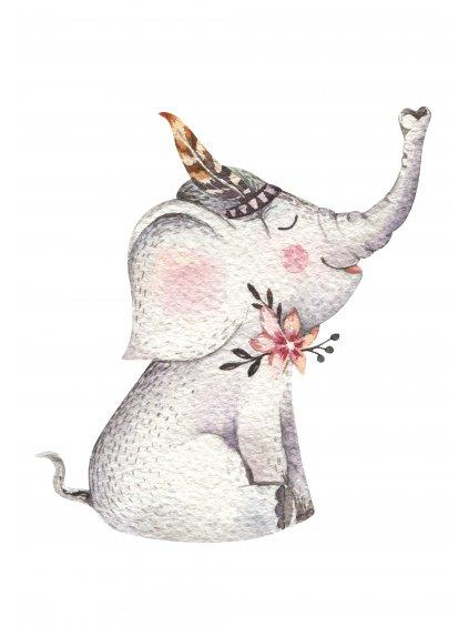 Plakát boho sloník