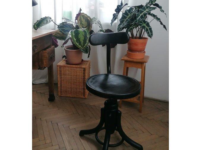 .. otočná židle Thonet  - Dobrovka