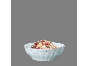 Babiččin porcelán - růžokvítky - salátová mísa 17 cm