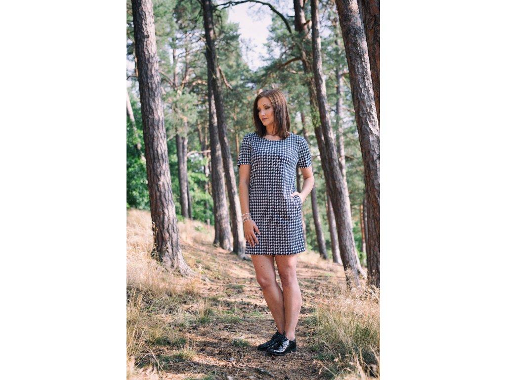 Monika - kohoutí stopa - modrobílé