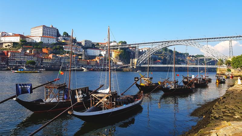 Porto, město korku, vína a Francesinhy