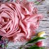 staroruz tulip