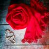 cerveny dvesrdce