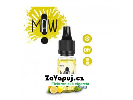 Gic (Ledový citron se zázvorem) 10ml