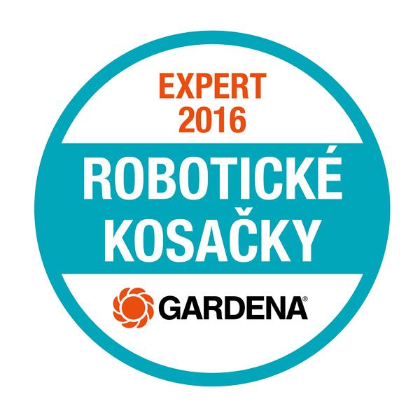 robotic-expert-logo-SK-male