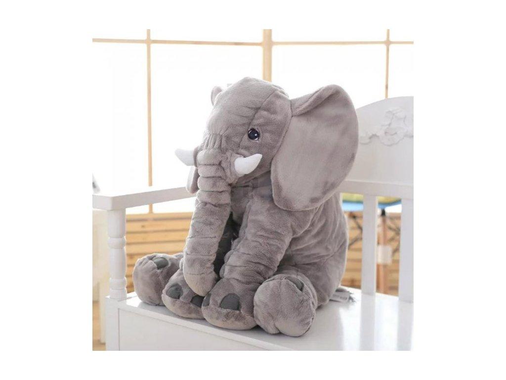 slon šedý
