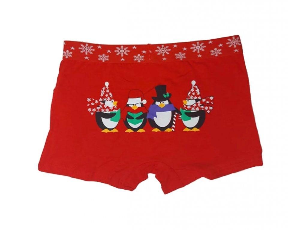 Pánské Vánoční boxerky typ 9