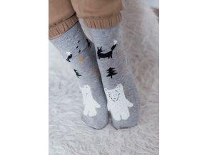 Světlo-šedé ponožky Kouzelný les (Veľkosť 38-41)