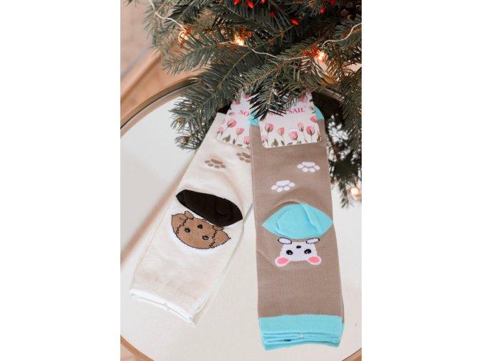 Set dvoch párov ponožiek PETS