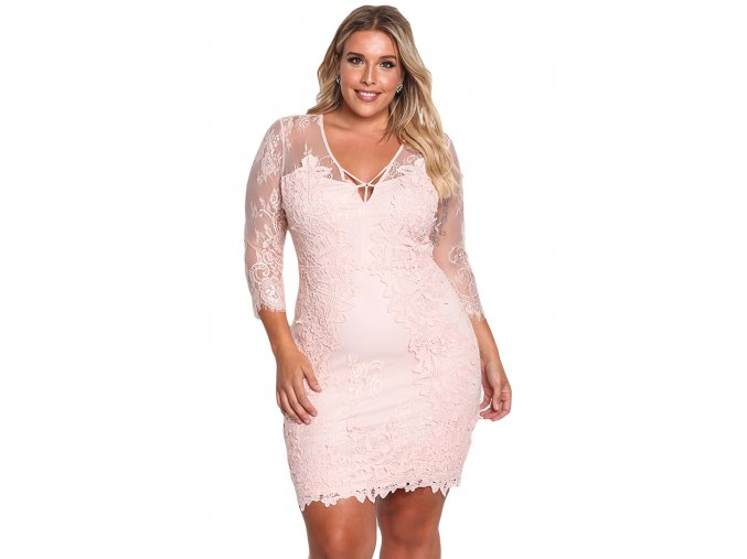 Pink Plus Size Floral Lace Embroidered Dress LC220134 10 1