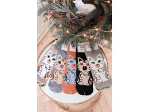Set piatich párov ponožiek Cats