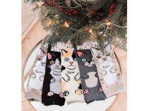 Set piatich párov ponožiek s mačkami