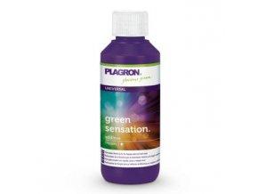 PLAGRON Green Sensation 100ml, květový stimulátor