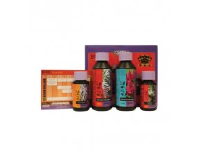 ATAMI B´cuzz Coco Booster Package