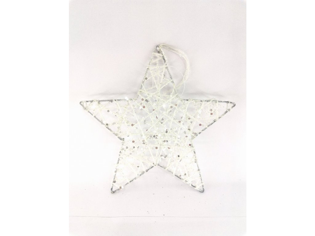 Vánoční hvězda stříbrná 0005