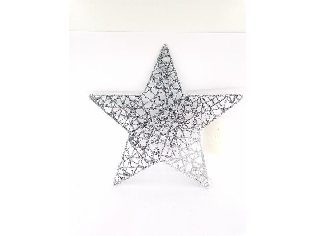 Vánoční hvězda stříbrná 0006