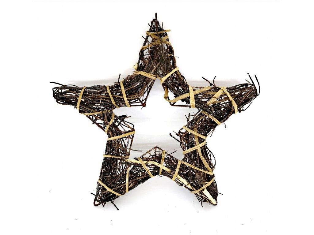 Vánoční hvězda - více velikostí 0049