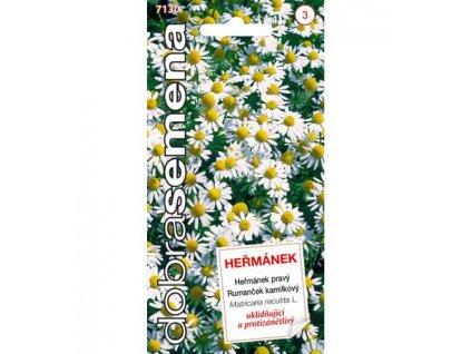 hermanek 07 g