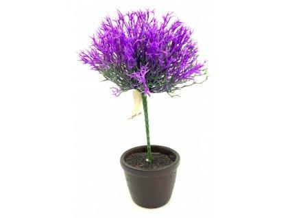 fialka strom
