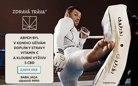 Václav Mikulášek - zápasník MMA