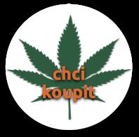 chci_koupit_kloubni_vyziva