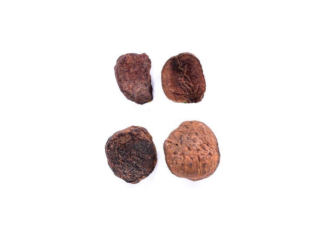 Kolový ořech