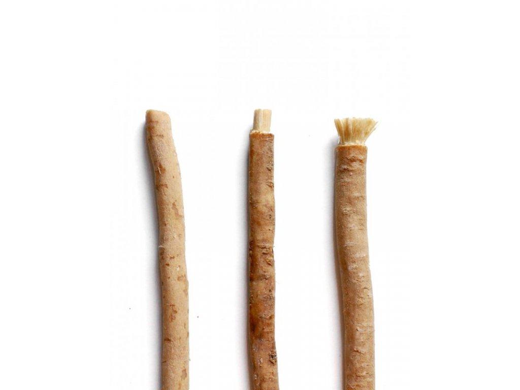 Yoni Přírodní zubní kartáček Miswak