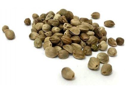 konopne semeno
