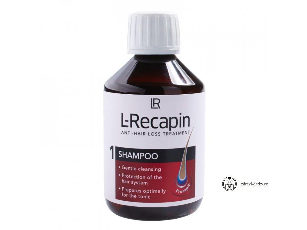 šampon