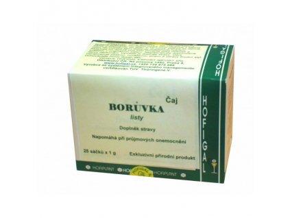 borůvkový čaj