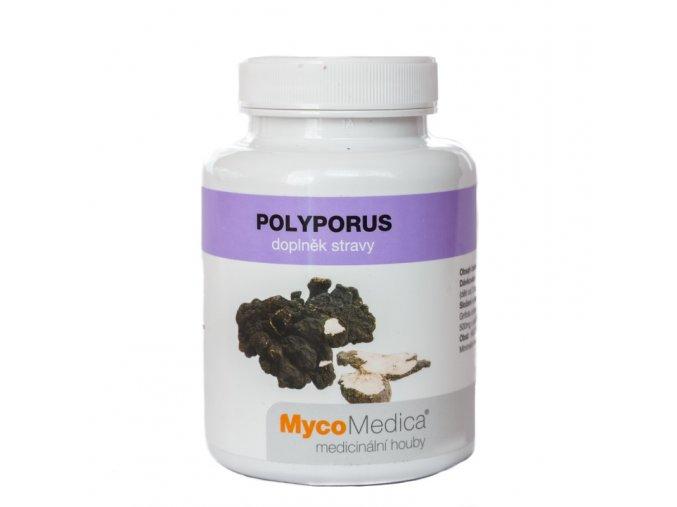23988 polyporus