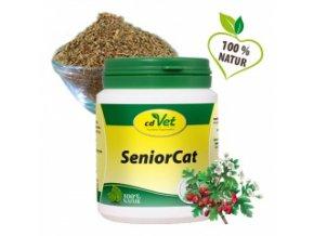 Senior Cat - cdVet