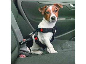 Fixační autokšíry pro psy. Vel. M
