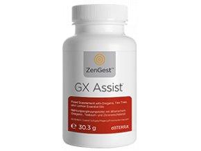 gx assist thumbnail 113x225px eu