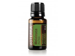 Melaleuca tea tree