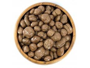 Zdravoslav Brusinky v mléčné čokoládě 250 g