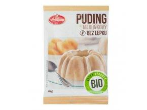 AMYLON Pudink meruňkový s kousky ovoce bezlepkový BIO 40 g