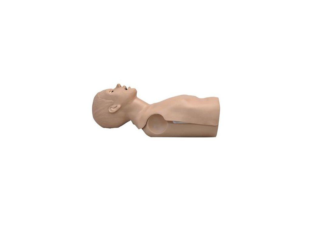 Simon BLS pro výuku CPR - torso