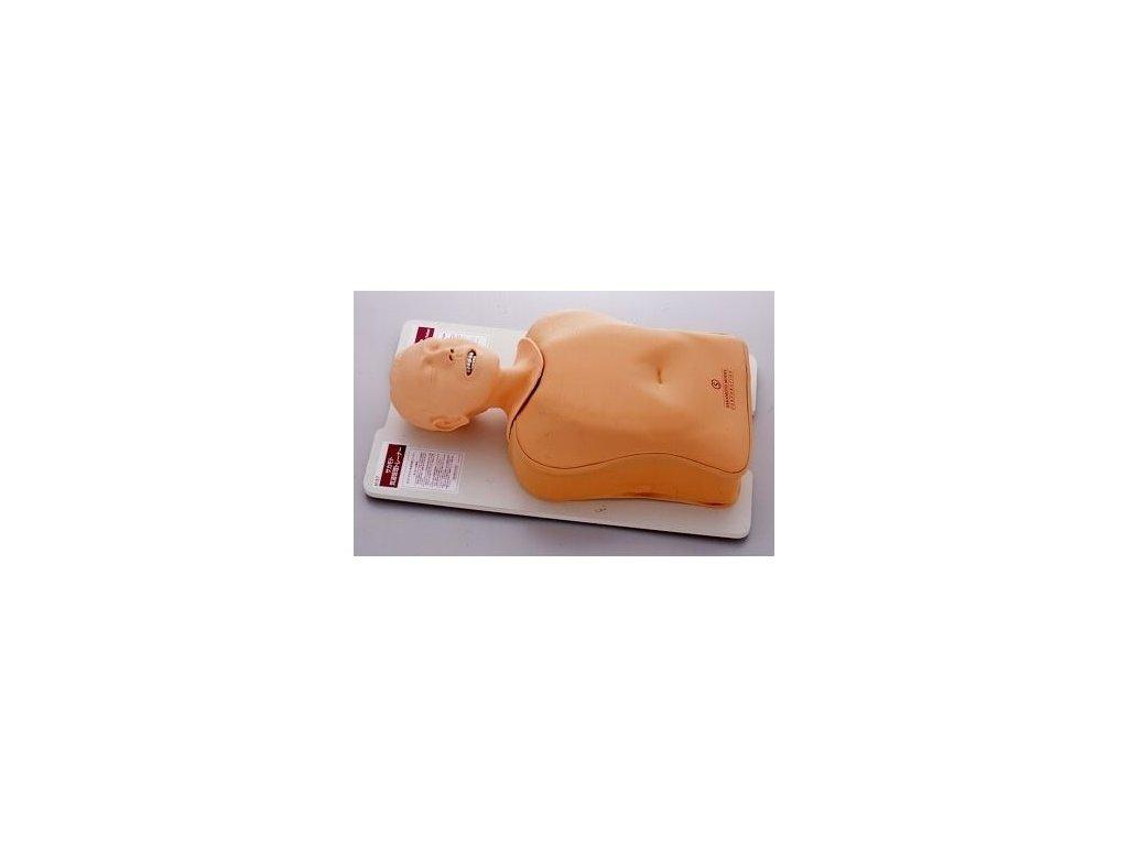 Výukový model Sakamoto pro nácvik zajištění průchodnosti dýchacích cest - trachey