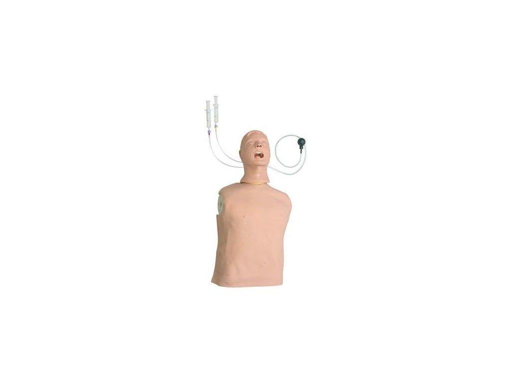 Zdokonalený trenažér zajištění dýchacích cest dospělého Larry