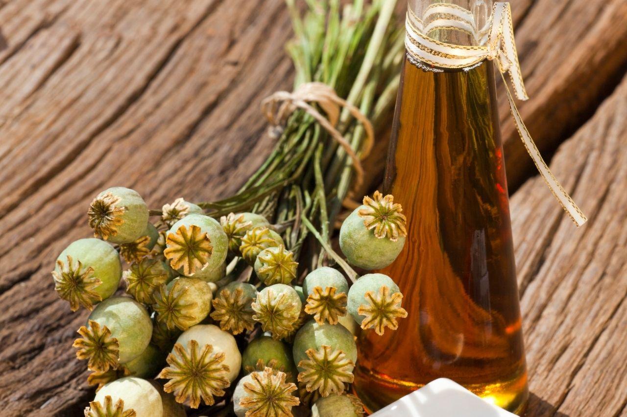 Mák nejen na buchty. Vyrábí se z něj makový olej vhodný jak do kuchyně, tak i k péči o pleť