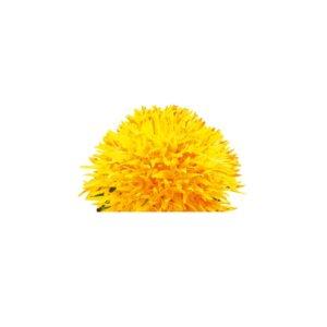 elasden-svetlice-barvirska-300x300