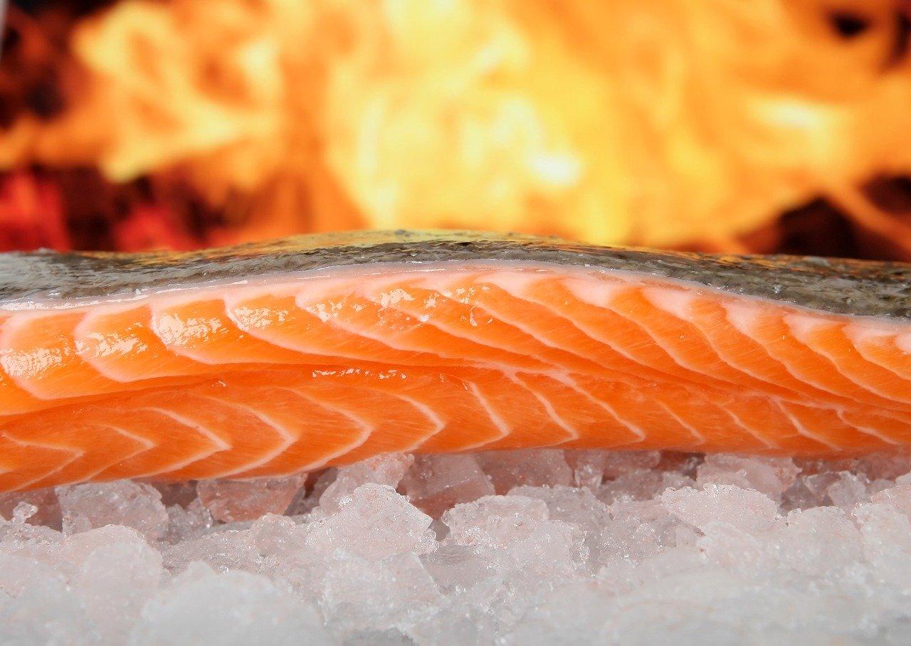 salmon-1238662_1280