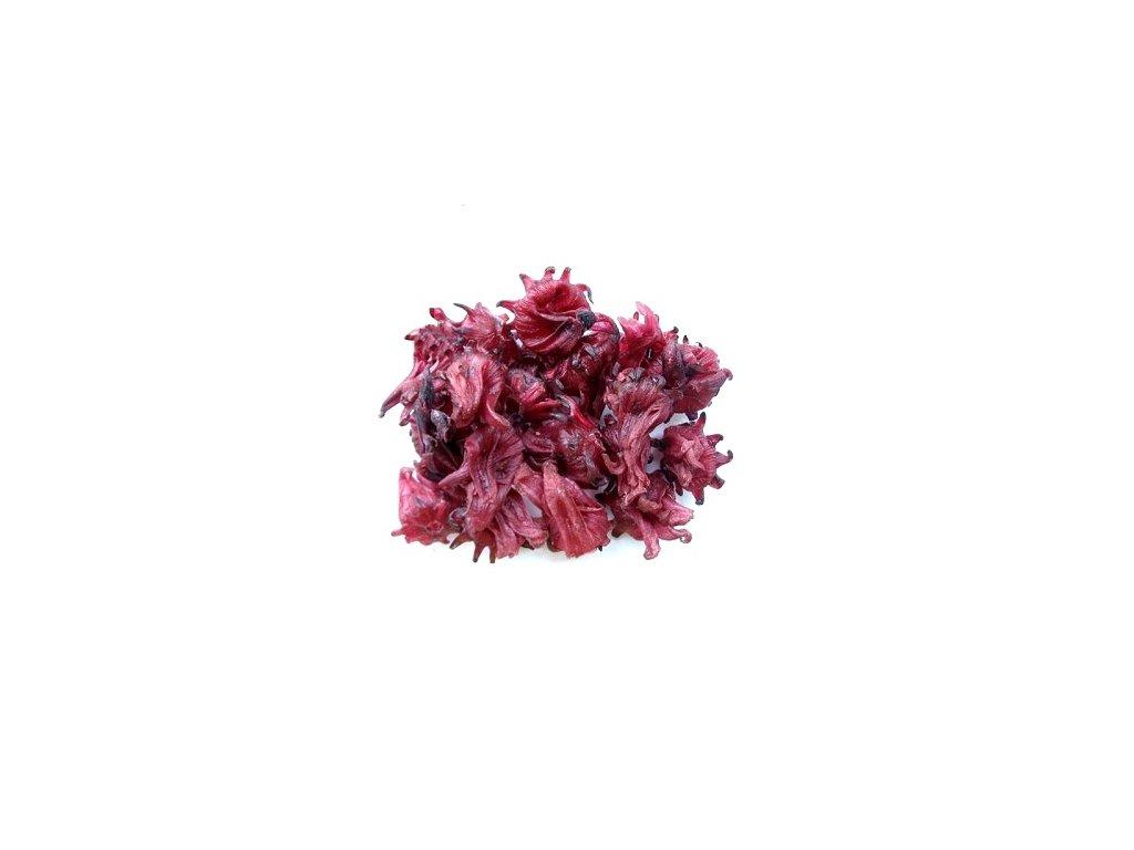 Ibiškový květ
