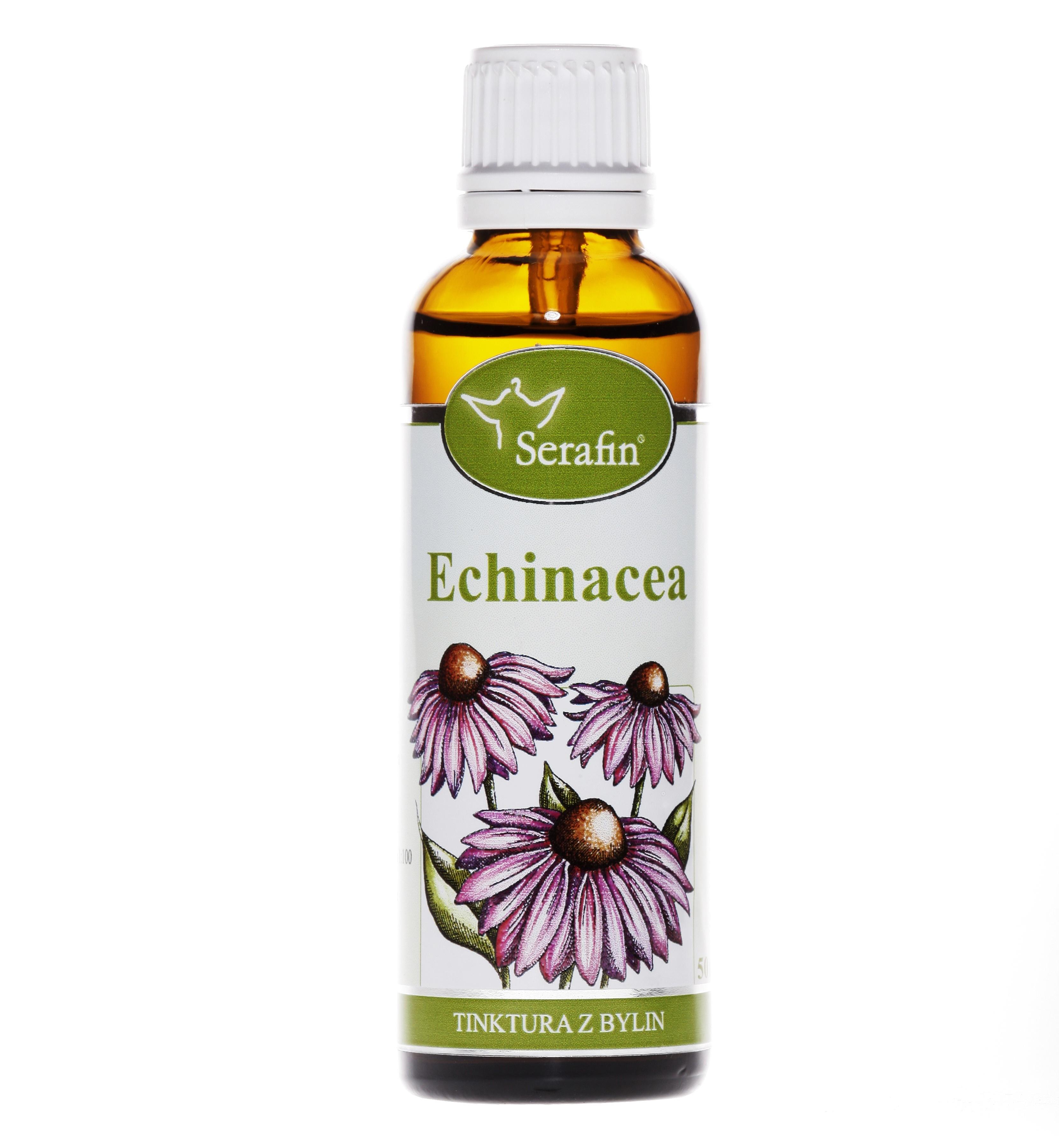 Serafin byliny Echinacea - tinktura z bylin 50ml