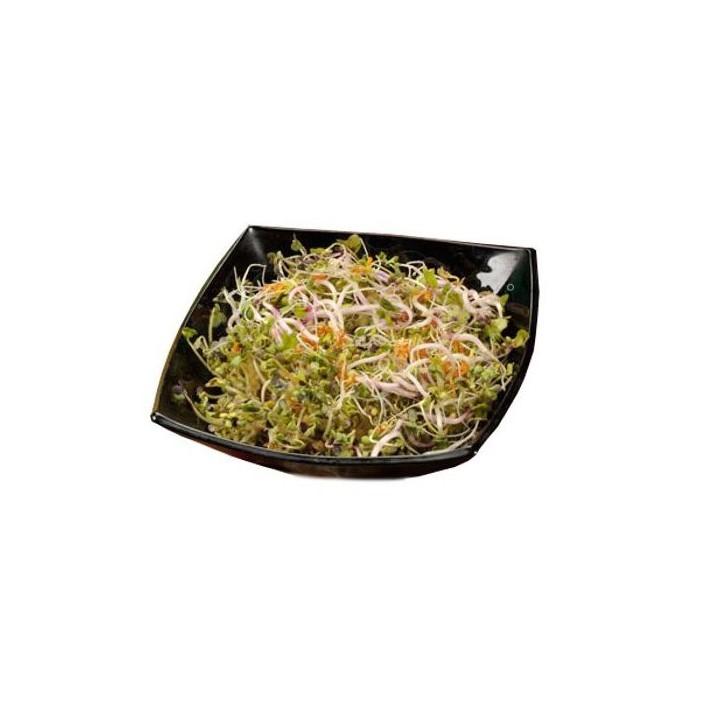 Pikantní směs - semínka na klíčení 20 g