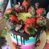 party dort