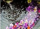 Květové vody a tonika