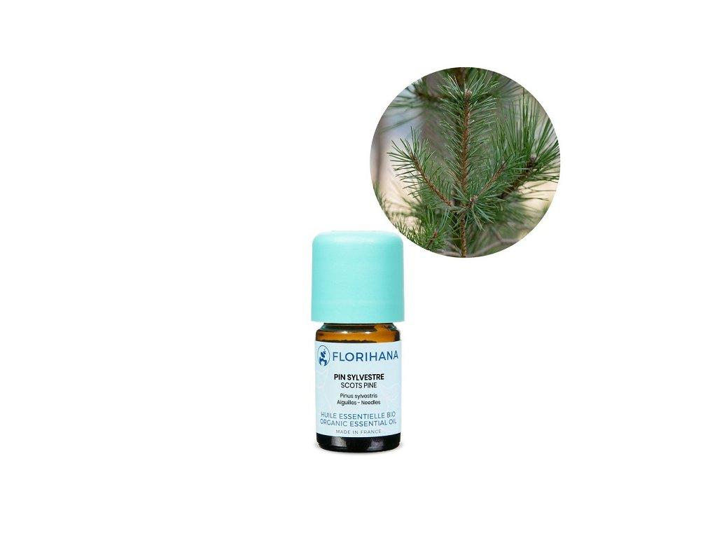 436 etericky olej borovice lesni bio florihana